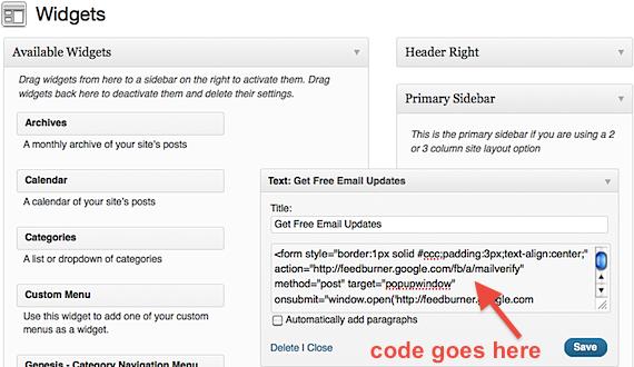 Email Text Widget Box