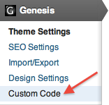 Genesis Menu -> Custom Code