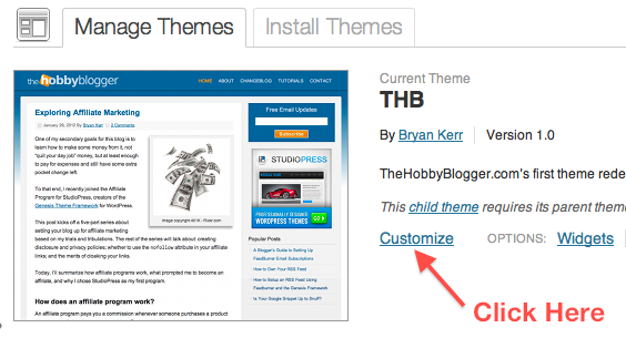 WordPress Manage Themes Tab